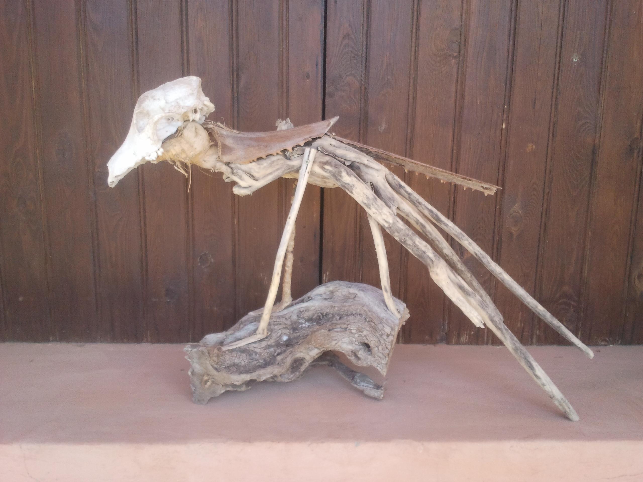 L'Oiseau-Chèvre de Tafadna